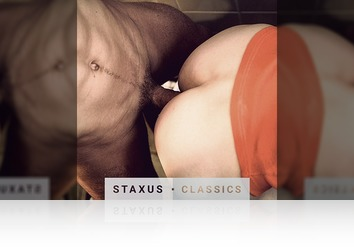 Saturday, July 23rd: Staxus Classic: Bareback Frat Pack - Scene 4 - Remastered in HD