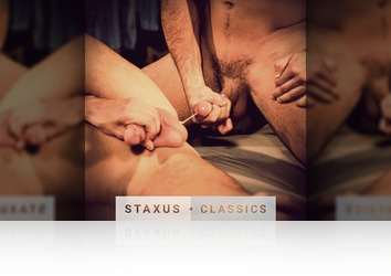 Thursday, November 26th: Staxus Classic: Bare Witness - Scene 4 - Remastered in HD