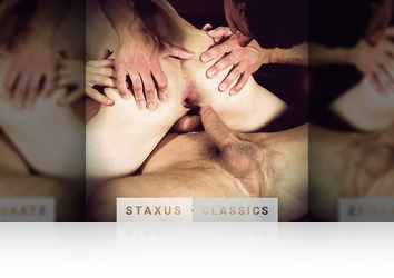 Saturday, August 1st: Staxus Classic: Bare Reunion - Scene 6 - Remastered in HD